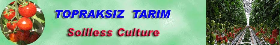 Topraksız Kültür Forum ANA Sayfa